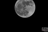 De Volle Maan gemaakt in Strijen in de Hoeksche Waard