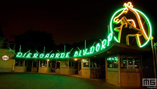 Het neonlicht van de Diergaarde Blijdorp in Rotterdam | Cover Small