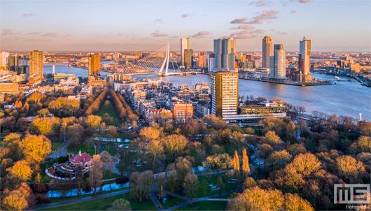 De gouden zonsondergang in Het Park in Rotterdam | Cover