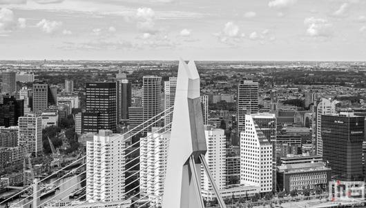 De skyline en Erasmusbrug pyloon in Rotterdam by Day | Cover Small