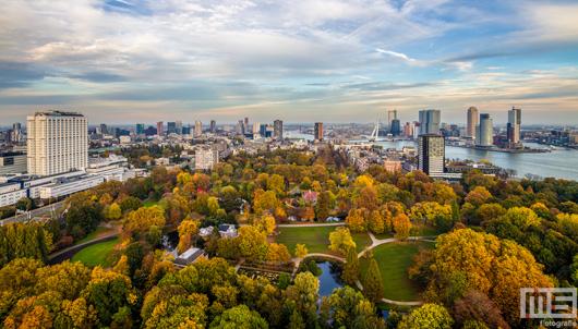 Het Euromastpark in Rotterdam in herfstkleuren | Cover Small