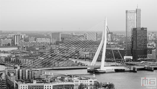 De Erasmusbrug en de Maastoren in Rotterdam by Day | Cover Small