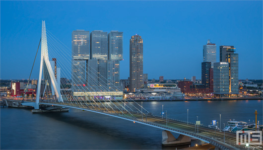 De Erasmusbrug in Rotterdam tijdens blue-hour | Cover Small